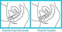Posición Copa Menstrual